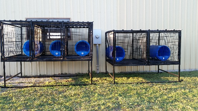 Portable Kennels